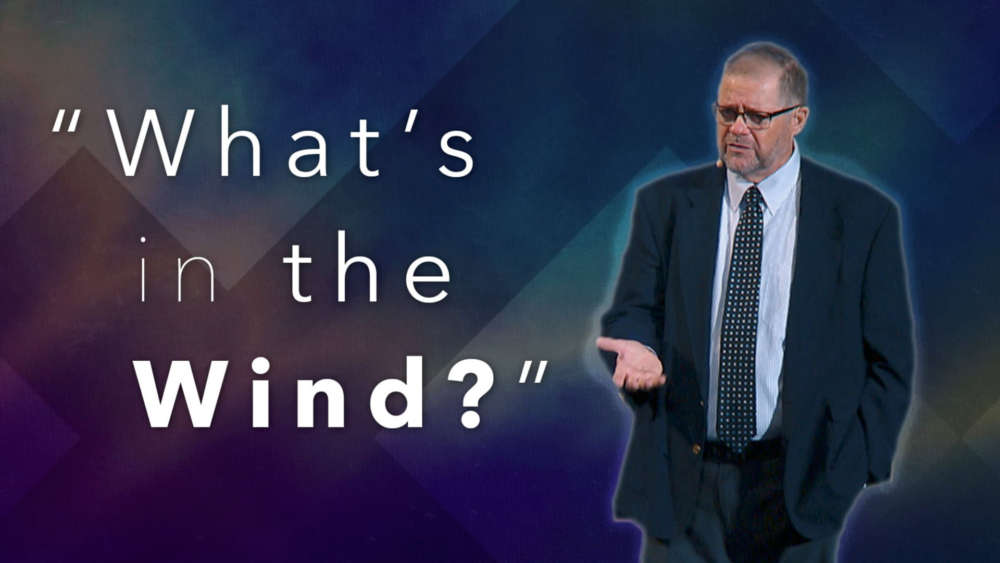 What\'s in the Wind?
