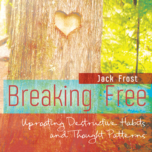 Breaking Free Living Hope Support Group, Central Community Church, Wichita, KS